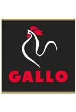 ■ Gallo ■ 西班牙